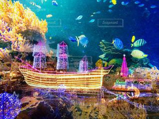 光る船に乗って海底旅行の写真・画像素材[1720907]