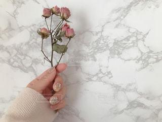 バラのドライフラワーと春ネイルの写真・画像素材[1803848]