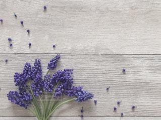 ムスカリの花束の写真・画像素材[1878318]