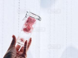 ピンクの花びらを詰めた瓶を持つ手の写真・画像素材[2211708]