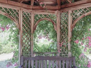 薔薇のガゼボの写真・画像素材[2392553]