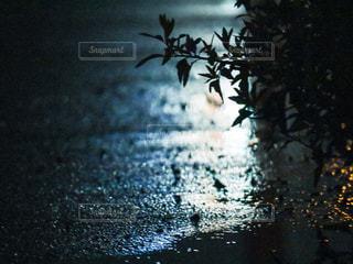 雨の日の夜の写真・画像素材[2394861]
