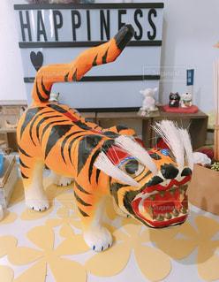 虎のはりこの写真・画像素材[1136185]