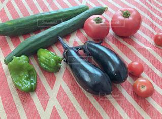 夏野菜たちの写真・画像素材[1309572]