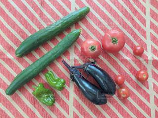 カラフルな新鮮夏野菜の写真・画像素材[1309574]