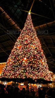 夜ライトアップされたクリスマス ツリーの写真・画像素材[930908]