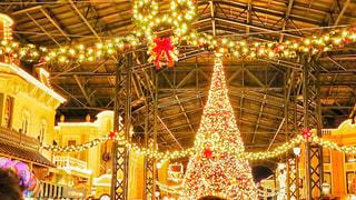 ディズニーランドのクリスマスツリーの写真・画像素材[930910]