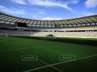 緑の芝生と大きなスタジアムの写真・画像素材[940268]