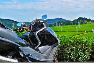 バイク越しの茶畑の写真・画像素材[962757]