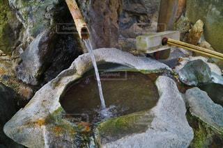 湧き水の写真・画像素材[1002339]