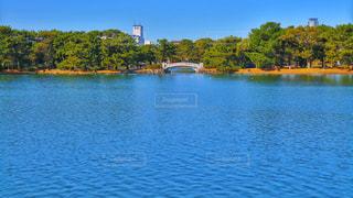 公園内の湖の写真・画像素材[1069775]