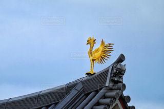 平等院鳳凰堂の鳳凰の写真・画像素材[1743114]