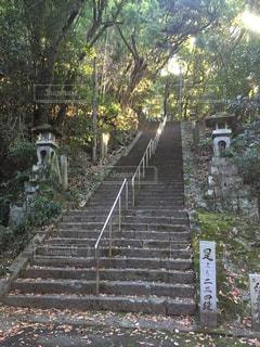 No.258699 階段
