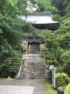 No.258702 階段