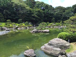 庭の写真・画像素材[258706]