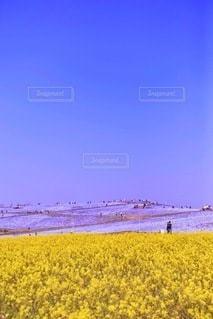 風景の写真・画像素材[5844]