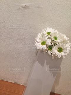 カフェの写真・画像素材[259307]