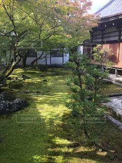 風景 - No.260969