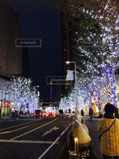 夜景の写真・画像素材[259479]