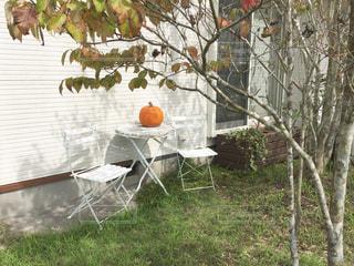 秋の写真・画像素材[259576]