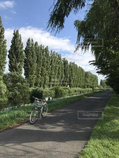 自転車は、道路の脇に駐車の写真・画像素材[1729706]