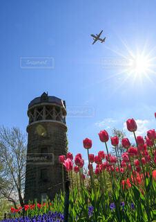 春のそらその写真・画像素材[4076357]