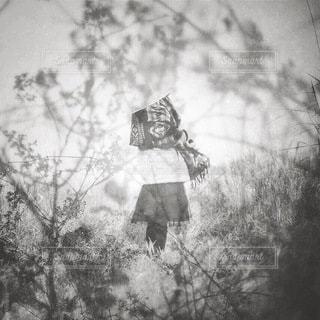 女性の写真・画像素材[5797]