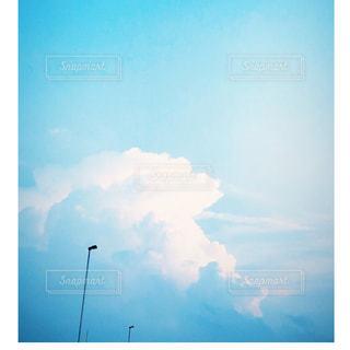 自然の写真・画像素材[1420498]