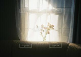 ソファに花の写真・画像素材[1778877]