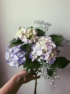 紫色の花で満たされた花瓶の写真・画像素材[2681468]