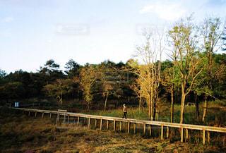 フェンスの隣に立っているキリンの写真・画像素材[2681492]