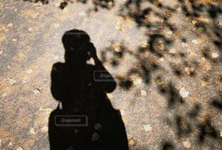 岩の上に立っている人の写真・画像素材[2978226]