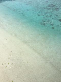 海の写真・画像素材[261070]