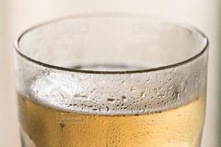 飲み物の写真・画像素材[261499]
