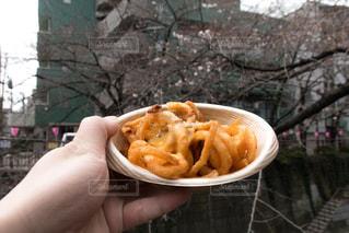 食べ物の写真・画像素材[261788]
