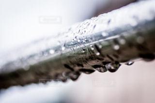 雨 - No.458477