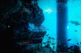 水中で泳いでいる人 - No.745343