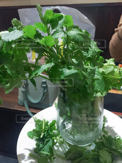 テーブルの上の花の花瓶 - No.750064