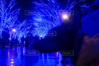 水の中の花火の写真・画像素材[818701]