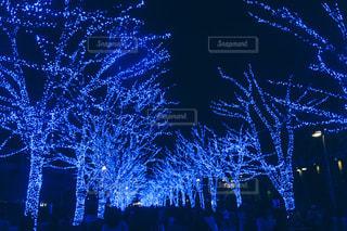 空に花火のグループの写真・画像素材[818740]