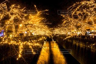 夜の街の景色の写真・画像素材[861198]