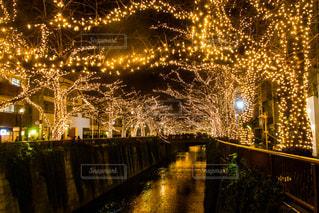 夜のライトアップされた街の写真・画像素材[861202]