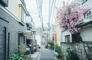近くの家の前の通りをの写真・画像素材[1084712]
