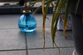 テーブルの上の花の花瓶の写真・画像素材[1759284]