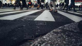 渋谷スクランブル交差点ローアングル撮影の写真・画像素材[1811116]