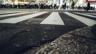 渋谷スクランブル交差点ローアングル撮影の写真・画像素材[1811118]