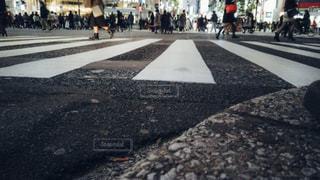 渋谷スクランブル交差点ローアングル撮影の写真・画像素材[1811128]