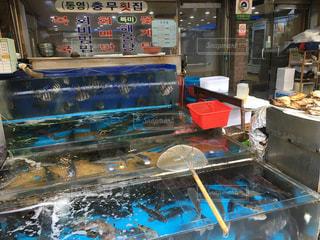 釜山の写真・画像素材[267592]