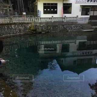 山口県の弁天池の写真・画像素材[406093]