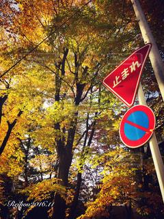 No.261340 風景